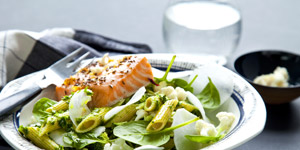 Livsmedel, mat & hälsa