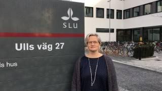 Helena Källström