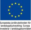 EU_flagga