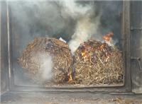 Salixbalar eldas i storbalspannan på Skarhult.