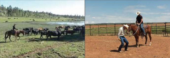 cm_ranch