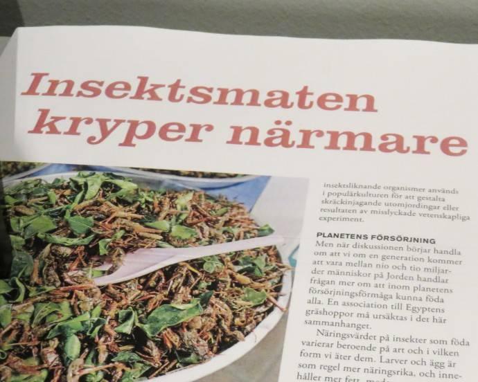 Insekter_framtiden mat