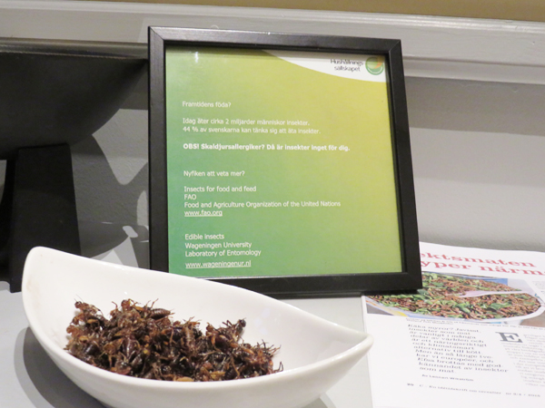 Insekter_framtiden mat2