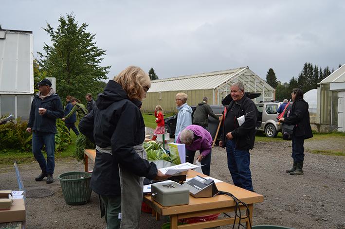 Sista förberedelserna. Helena Zimmer förbereder för grönsaksförsäljning.
