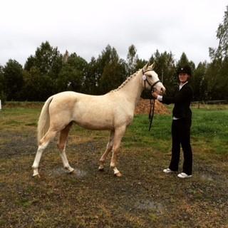 Rosamunda, Svensk ridponny. Foto: Anita Adermalm