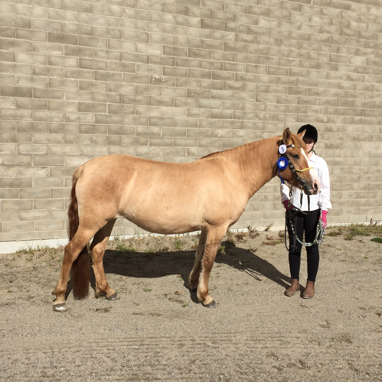 ZigZag Djingisdotter visas av Sanna Svensson. Foto: Carina Hedman