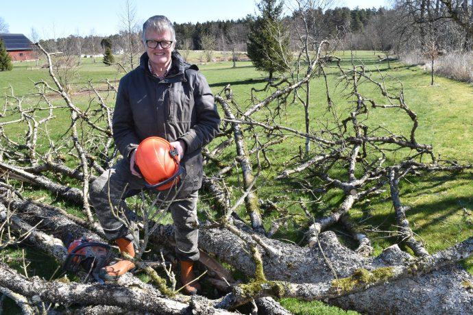 Gunnar Wetterberg poserar framför ett fällt träd.